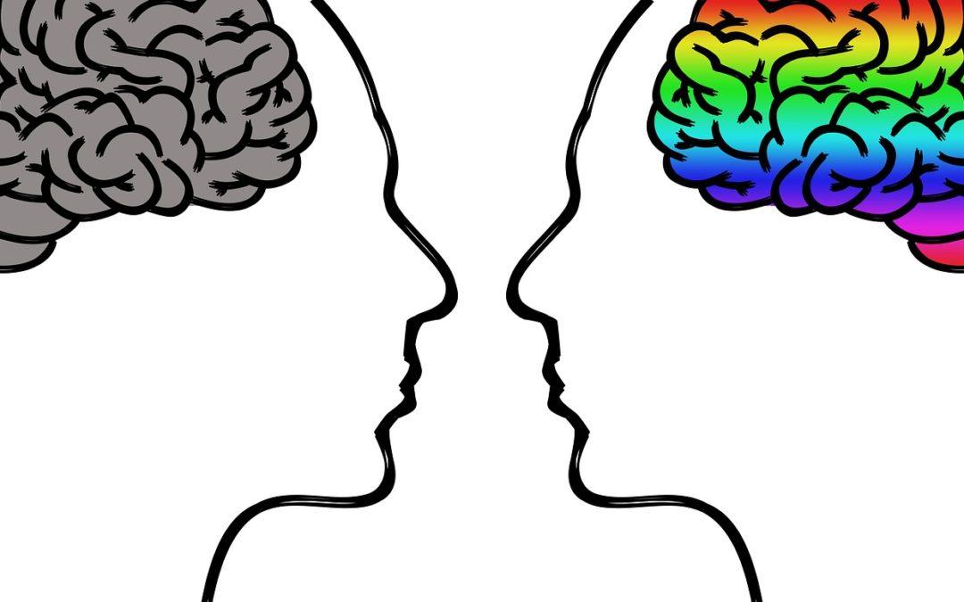 Leggere tiene attivo il cervello